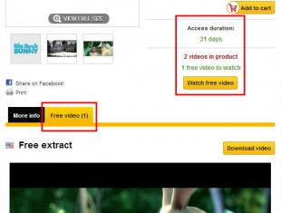 How to build a video e-commerce